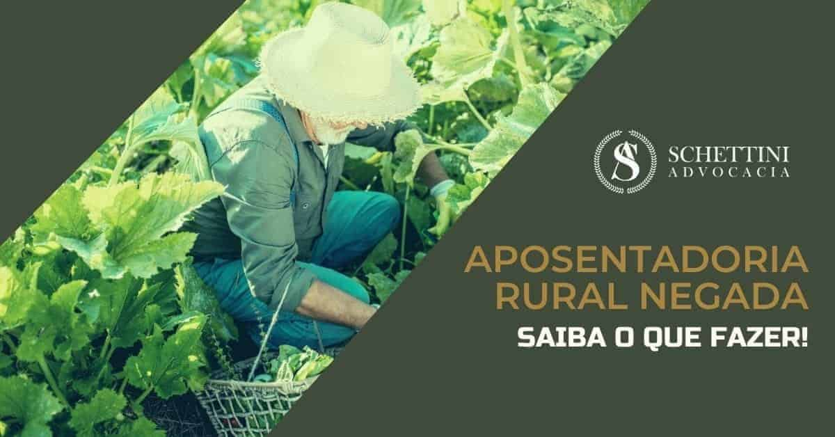 Aposentadoria Rural negada pelo INSS, e agora?